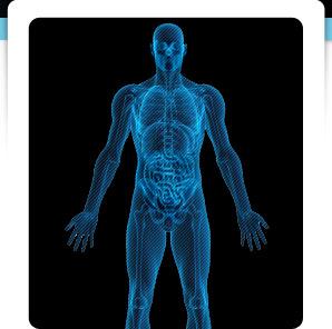 Vidéo la gymnastique pour lépine dorsale du service de poitrine de lépine dorsale les symptômes